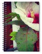 Hibiscus Flower In Bloom Spiral Notebook