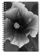 Hibiscus In Black And White Spiral Notebook