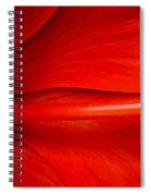Hibiscus Red Spiral Notebook