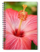 Hibiscus - Square Spiral Notebook
