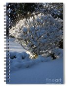 Hibiskus In The Wintertime Spiral Notebook