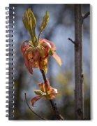 Hickory Bloom Spiral Notebook