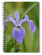 Hidden Companions Spiral Notebook