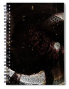 Hidden Faces-featured In Newbies And Visions Of The Night Spiral Notebook