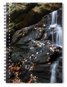 Hidden Falls 1 Spiral Notebook