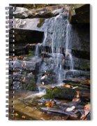 Hidden Falls 6 Spiral Notebook