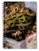 Hidden In The Rocks Spiral Notebook