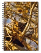 Hidden Owl Spiral Notebook