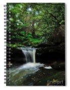 Hidden Rainforest Spiral Notebook