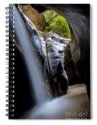 Hidden Splendor Spiral Notebook