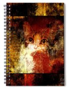 Hidden Square Spiral Notebook