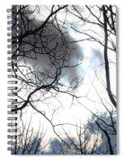 Hidden Sun Spiral Notebook