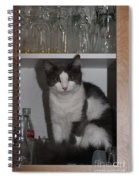 Hiding In The Cabinet Spiral Notebook