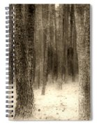 Hiding In The Trees By Diana Sainz Spiral Notebook