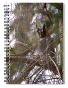 Hiding In The Trees Spiral Notebook