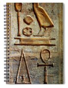 Hieroglyphics At Amada Spiral Notebook
