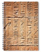 Hieroglyphs In The Temple Of Kalabsha  Spiral Notebook