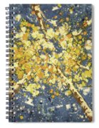 High - Aspens Spiral Notebook