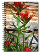 High Country Wildflowers Spiral Notebook