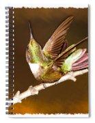 High Definition Hummer Spiral Notebook