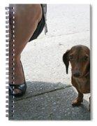 High Heels And A Dachsund Spiral Notebook