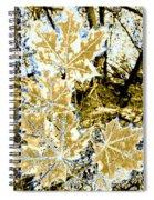 High Street Decor 4 Spiral Notebook