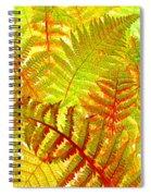 High Street Decor 6 Spiral Notebook