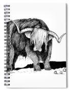 Highland Bull Spiral Notebook