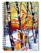 Highland Creek Sunset 2  Spiral Notebook