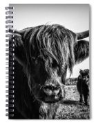 Highlander 1 Spiral Notebook