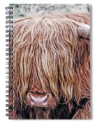 Highlands Coo Spiral Notebook