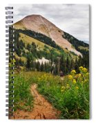 Hiking In La Sal Spiral Notebook