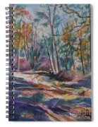 Hiking To A Vision Spiral Notebook