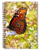 Hill Country Butterfly Spiral Notebook