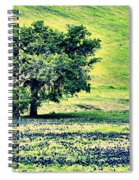 Hill Country Scenic Hdr Spiral Notebook