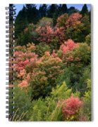 Hill Side Colors Spiral Notebook