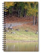 Hillside Of Canadian Geese Spiral Notebook