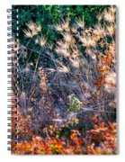 Hint Of Fall Colors 15813 Spiral Notebook