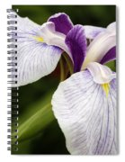Hint Of Purple Spiral Notebook