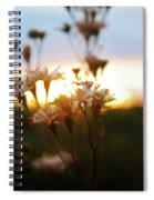 Hippie Dayz Spiral Notebook