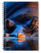 Hippopotamus  At Sunset Spiral Notebook