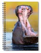 Hippopotamus Displaying Aggressive Behavior Spiral Notebook