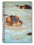 Hippopotamus Group In River. Serengeti. Tanzania Spiral Notebook