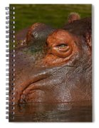 Hippopotamus With Its Head Just Above Water Spiral Notebook