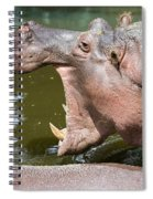 Hippopotamus With Open Mouth Spiral Notebook