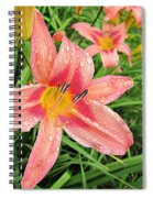 Hiroko Pink Daylily Spiral Notebook