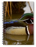 His Majesty Wood Duck Spiral Notebook