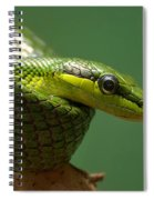 Hisssssss Spiral Notebook