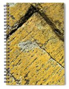 History Of Earth 3 Spiral Notebook