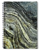History Of Earth 9 Spiral Notebook